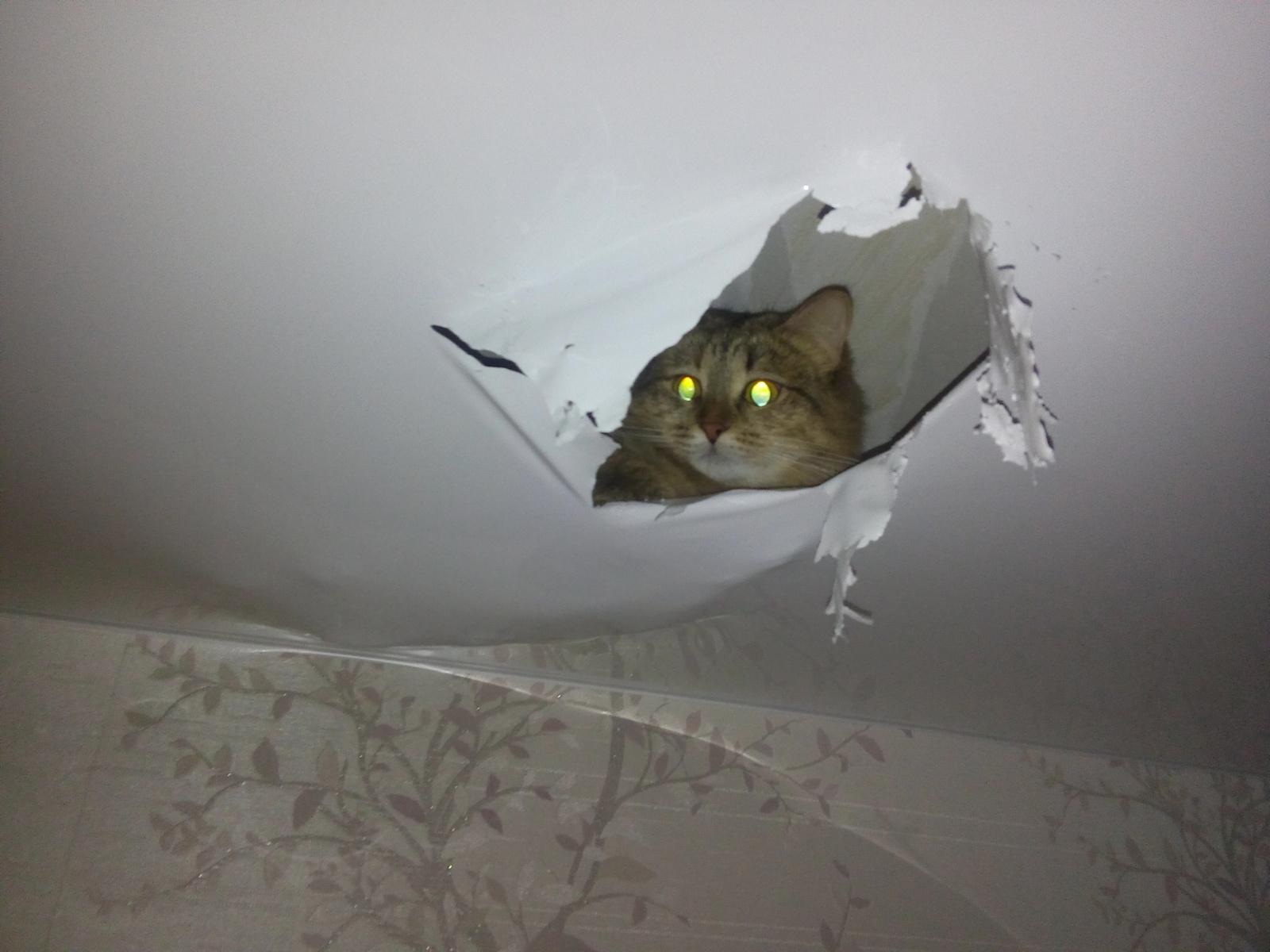 Устранение дырки в натяжном потолке своеми руками