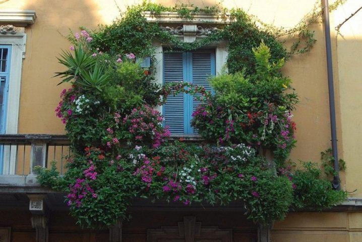 Украсить балкон цветами – лучшее решение лета (60 фото)