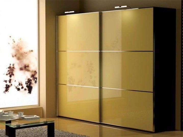 Двухстворчатые шкафы купе дизайн